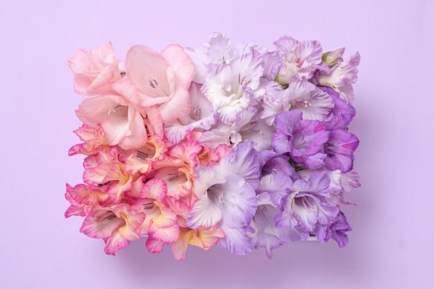 Pastellkreativer moderner strauß von gladiolenblumen in form eines rechtecks. kunstvolles plakat.