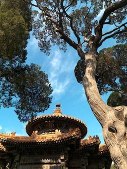 Pavillon von zehntausend frühlings-jahreszeiten am kaisergarten, verbotene stadt, peking, china