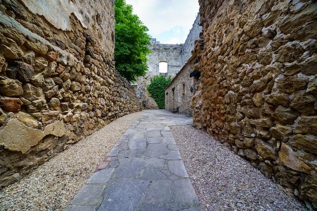 Pedraza schloss in segovia. alter mittelalterlicher ritterpalast aus stein. festung mit inneren steinstraßen, grünen pflanzen, bögen und tunneln. spanien.