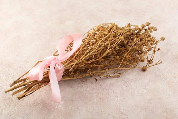 Peganum harmala pflanze getrocknet mit rosa schleife auf dem rosa tischpflanzenfarbfoto