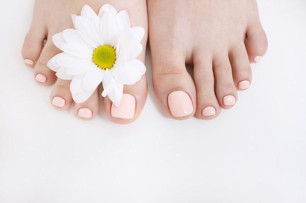 Perfekte nackte pediküre auf weißem hintergrund und frühlingsblume. draufsicht der weiblichen füße mit freiem raum. ergebnis des spa-salon-verfahrens