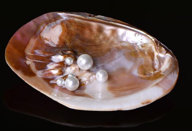 Perlen in einer muschel auf schwarz