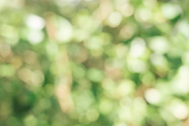 Person abstrakte bokeh sonnenlicht laufen