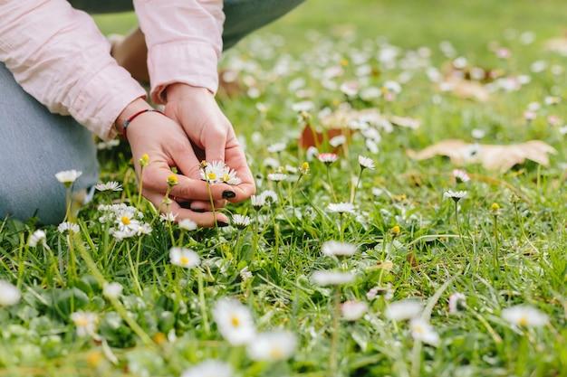 Person auf gras mit gänseblümchen