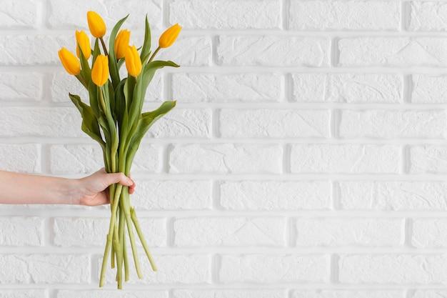 Person, die einen strauß tulpen mit kopienraum hält