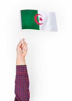 Person winkt die flagge der demokratischen volksrepublik algerien