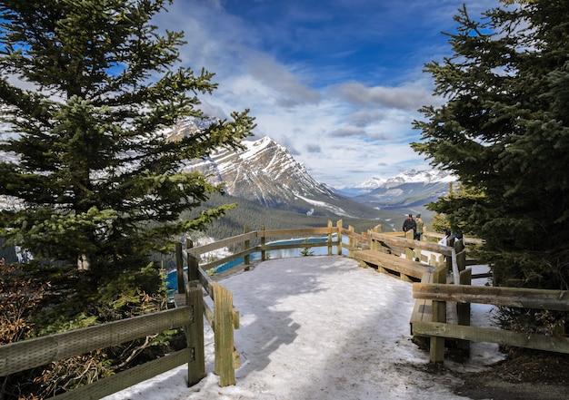Peyto lake-standpunkt mit kanadischem rocky mountain in alberta, kanada