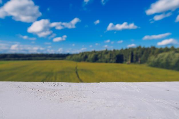 Pfad im feldgras mit weißem zaun im vordergrund. malerische sommerlandschaft der wiese mit wolken auf blauem wunderbarem himmelansichthintergrund. grünes grasland und waldlandschaft stockfoto.