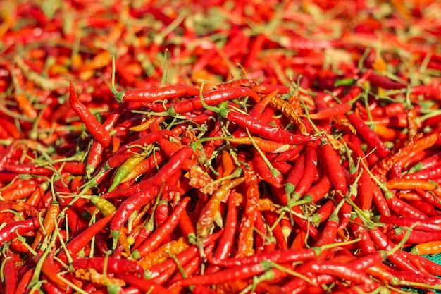 Pfeffer des roten paprikas, nahaufnahmeansicht