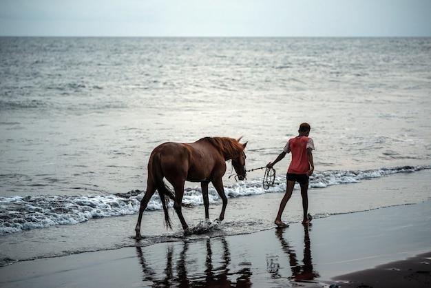 Pferd und junge auf dem sandstrand, der nahe wasser bei sonnenuntergang läuft