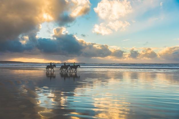 Pferde zu fuß am strand bei sonnenuntergang
