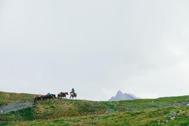 Pferdekarawane auf hügel und großem berggipfel mit schnee. atmosphärische minimalistische alpine landschaft mit pferden auf berggipfel. reiter auf weißem pferd führt karawane entlang hochland. wunderbare landschaft