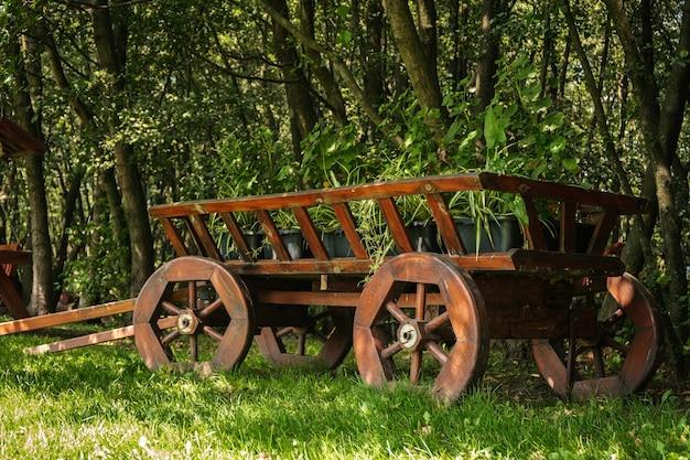 Pferdekutsche aus holz auf dem hintergrund von bäumen und grünem gras