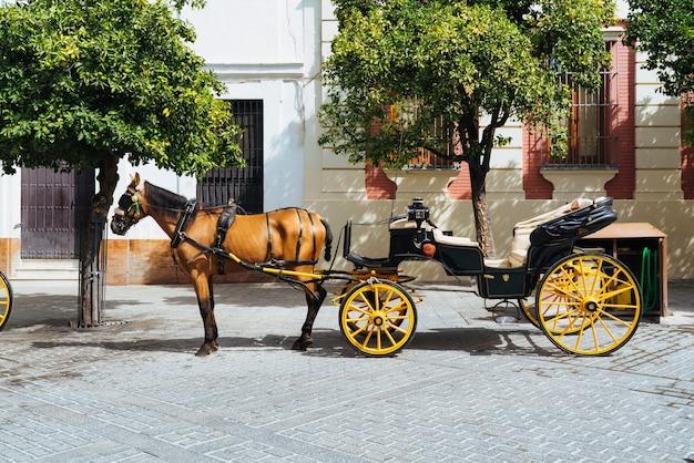 Pferdekutsche in sevilla.