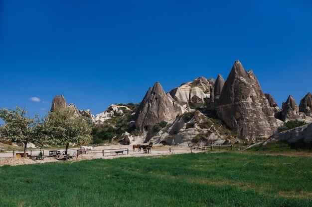 Pferderanch im dorf göreme in kappadokien