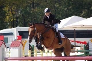 Pferdesport, gründliche