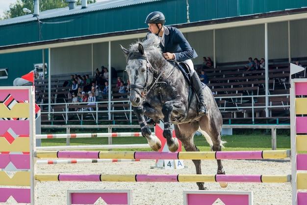 Pferdesportreiter auf lorbeerpferd in der springshow