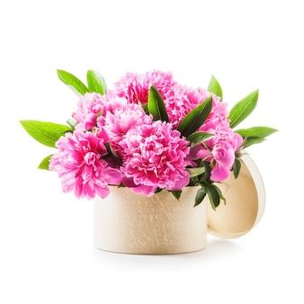 Pfingstrose blumen romantischer strauß rosa pfingstrosen in geschenkbox isoliert auf weißem hintergrund