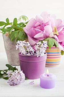 Pfingstrosen und lila blüten