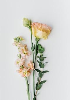 Pfirsich löwenmäulchen und lisianthusblüten