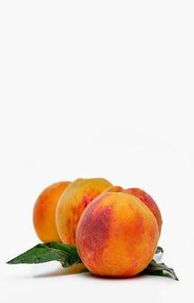 Pfirsiche isolieren. saftige reife pfirsiche auf weißem hintergrund, vertikaler rahmen mit kopienraum. selektive schärfentiefe. mit beschneidungspfad.