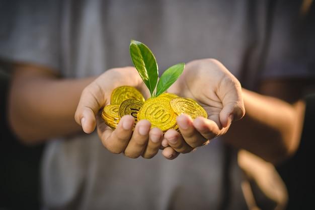 Pflanze, die auf hand hält, die goldmünzen auf naturhintergrund hält