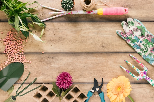 Pflanze; torfschale; gartenschere; zeichenfolge; blume; handschuh; showel; rechen und samen auf braunem holztisch