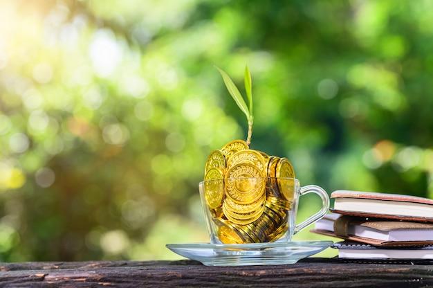 Pflanze wächst in ersparnismünzen green bokeh mit sonnenlicht