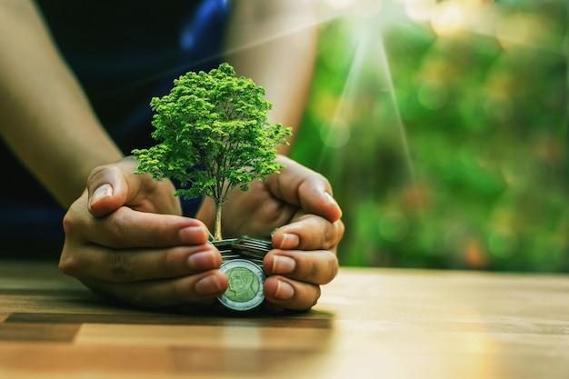 Pflanzen auf einem haufen münzen anbauen investitionskonzepte im geschäft