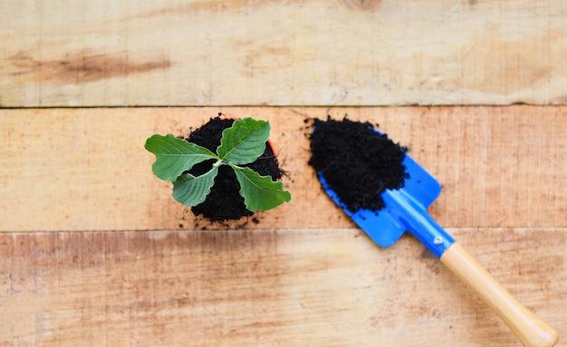 Pflanzen des jungen baums oder der blumen im topf mit boden auf hölzernem hintergrund, arbeiten des pflänzchens der gartengeräte