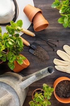 Pflanzen gartengeräte schließen aus der nähe