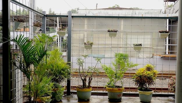 Pflanzen in der bahnhofshalle