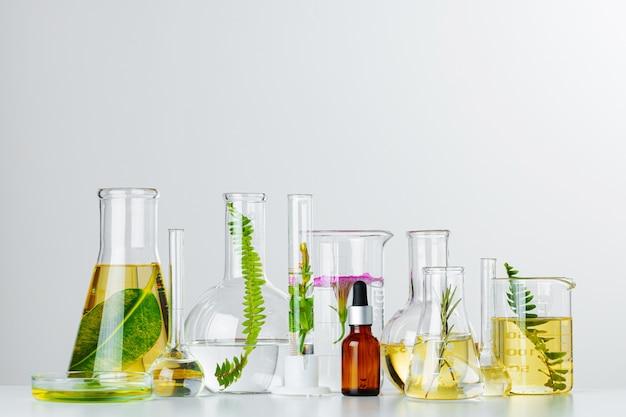 Pflanzen in laborglaswaren. konzept der chemischen forschung für hautpflegeprodukte und arzneimittel