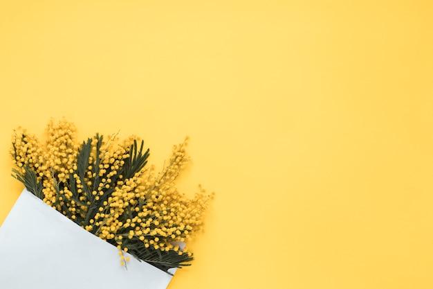 Pflanzen mit blumen und grünen blättern in papier