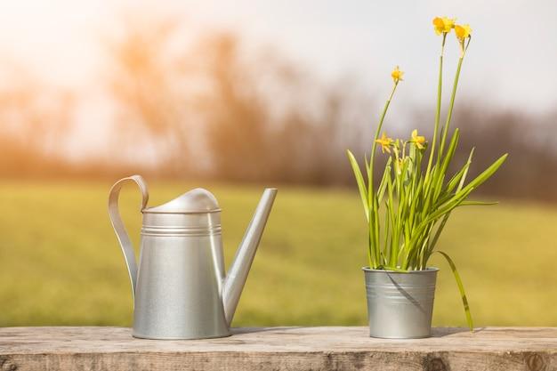 Pflanzen- und gartenstillleben