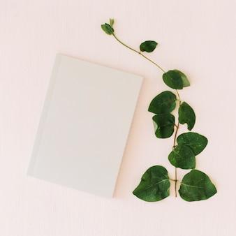 Pflanzen und papier