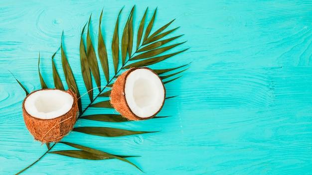 Pflanzenblätter in der nähe von frischen kokosnüssen an bord