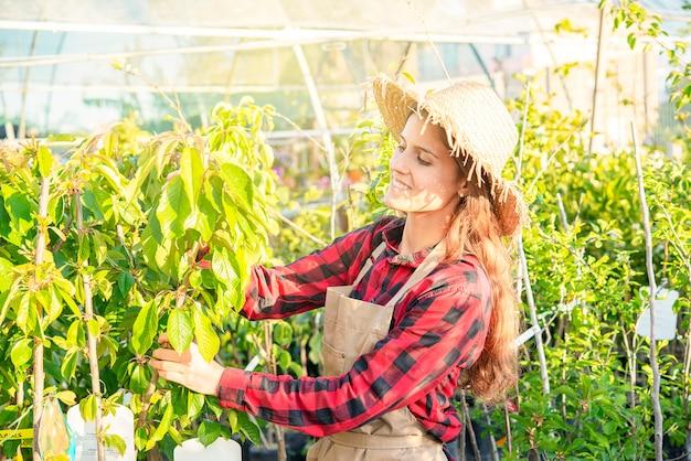 Pflanzenpflege in einem frühlingsgewächshaus hobby en freiluft frau gärtner