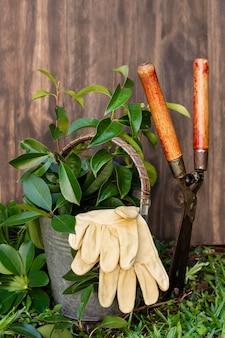 Pflanzentopf mit gießkanne