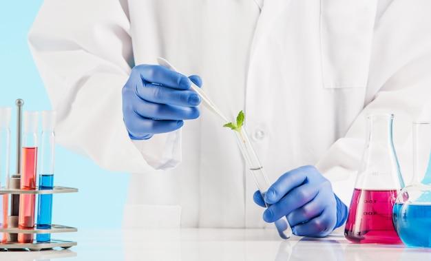Pflanzenwissenschaften im labor