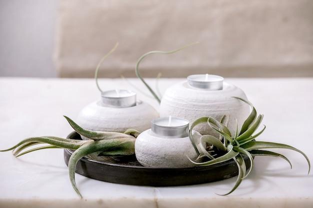Pflanzenzusammensetzung mit tillandsia-luft und satz handgefertigter kerzenhalter aus keramikporzellan auf dunklem teller auf weißem marmortisch.