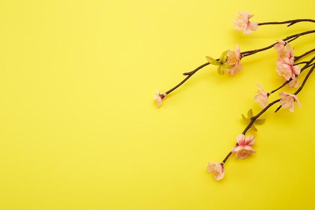 Pflaumenblumen auf gelbem hintergrund