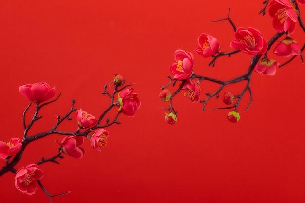 Pflaumenblumenblüte