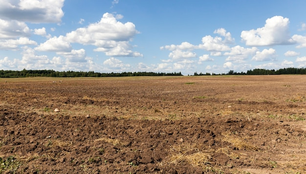 Pflügen eines landwirtschaftlichen feldes, auf dessen boden störche sitzen und vom pflug der würmer gegraben essen