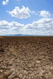 Pflug gepflogener horizont des blauen himmels des braunen lehmfeldes