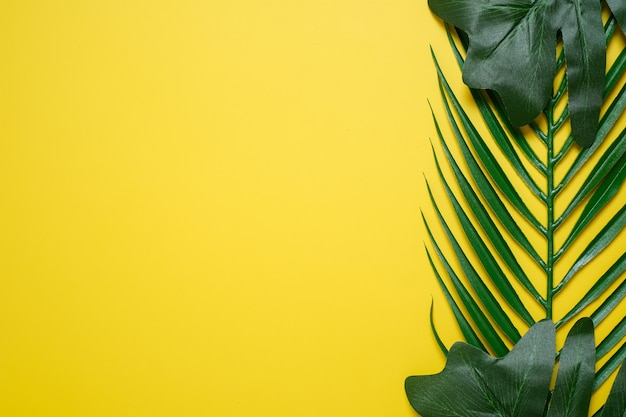 Philodendron tropische blätter auf gelbem farbhintergrund minimaler sommer