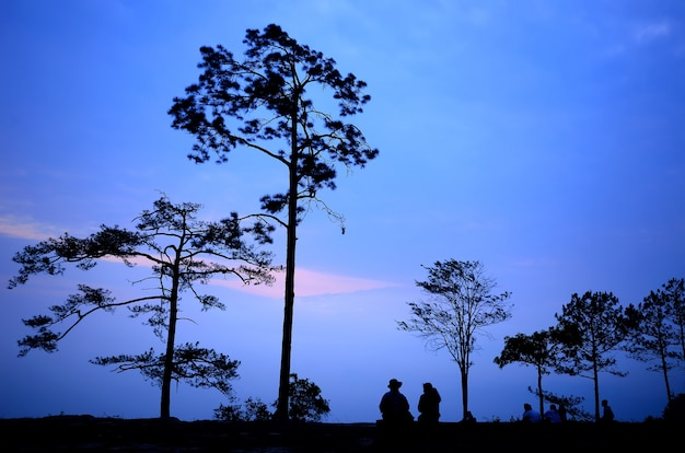 Phu kradueng nationalpark