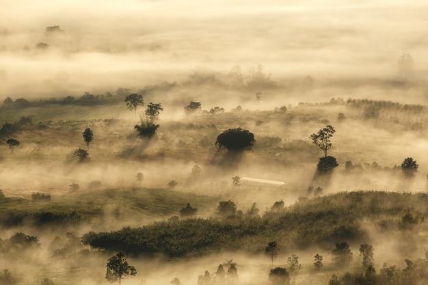 Phu langka national park in der provinz phayao