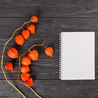 Physaliszweige mit notizbuch auf tabelle