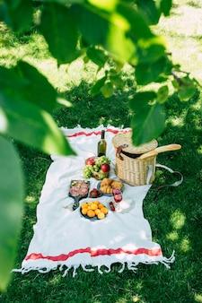Picknick im park auf grünem gras